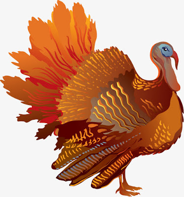 Picture of Thanksgiving Turkey Dinner