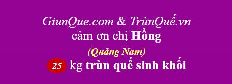 Trùn quế Quảng Nam