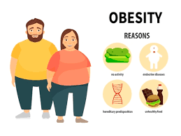 Real reason of obesity: The blame game
