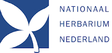 National Herbarium of The Netherlands (NHN)