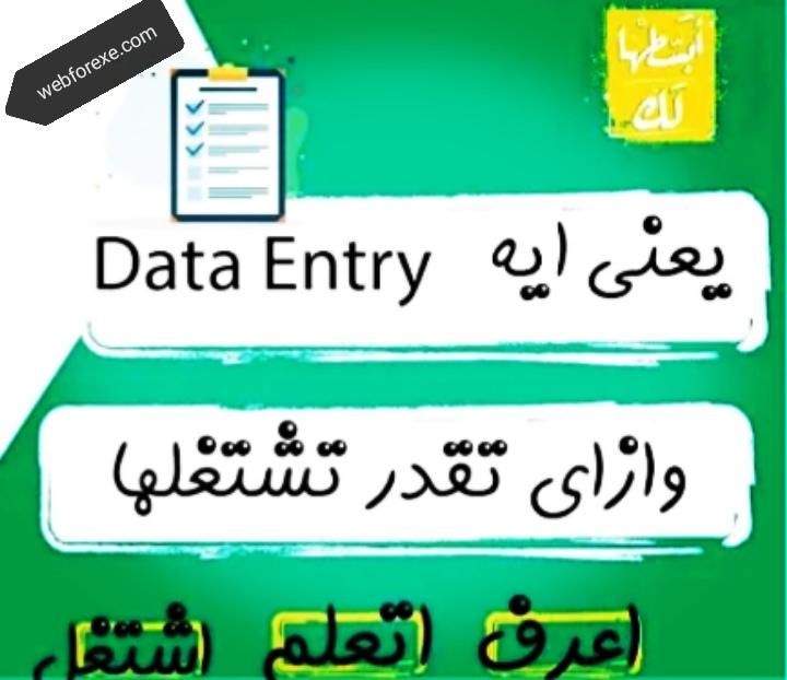 وظيفة مدخل بيانات و الداتا انتري
