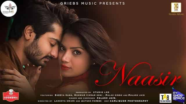 नासिर Naasir Lyrics In Hindi - Palash Jain