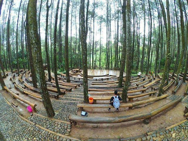 Wisata Hutan Pinus Mangunan Bantul
