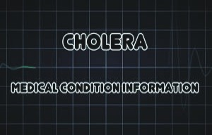 tips to prevent cholera