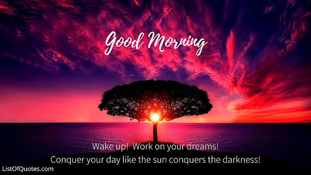 Awesome Good Morning Nature with Quotes Messages For Friends Family(HD Images)