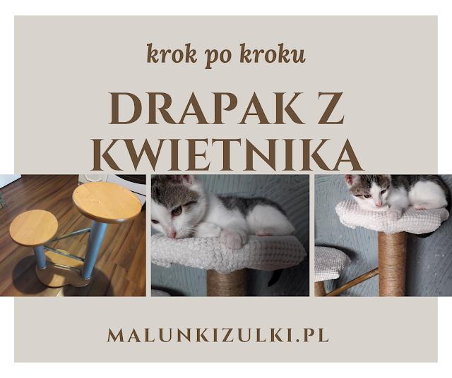 Jak zrobić drapak dla kota z kwietnika?