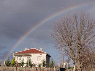 Rainbow over the neighbour's house