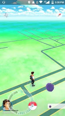 Bagaimana Mencari dan Menangkap Pokemon dengan Mudah