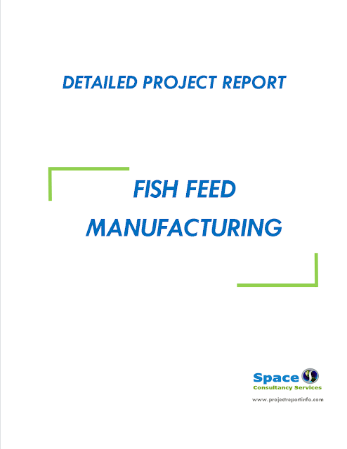 Project Report on Fish Feed Manufacturing