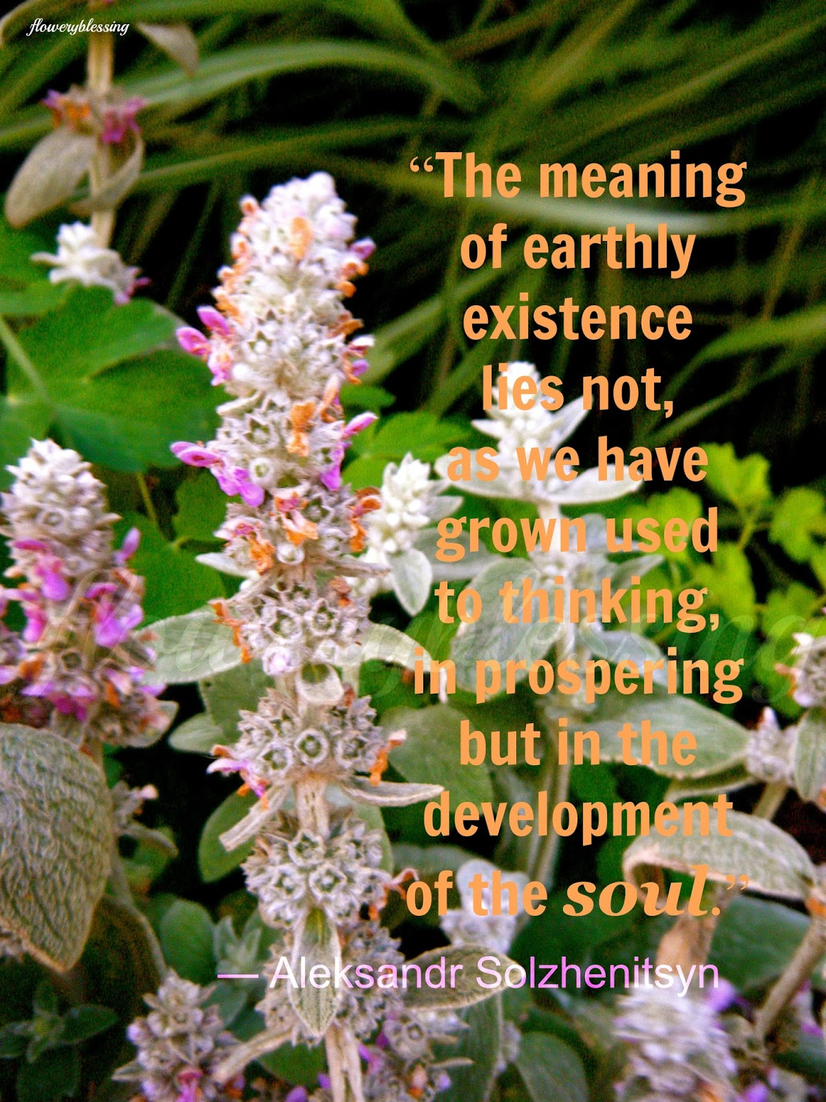 """Flowery Blessing: """"The meaning of earthly existence lies not"""