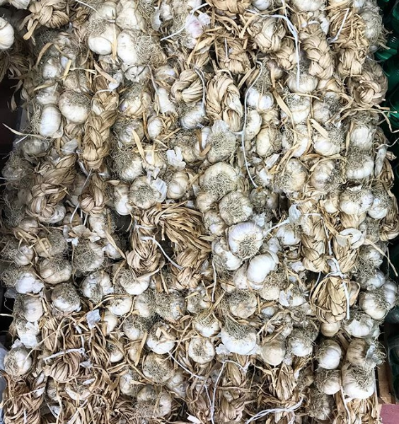 braids of garlic in an Italian market