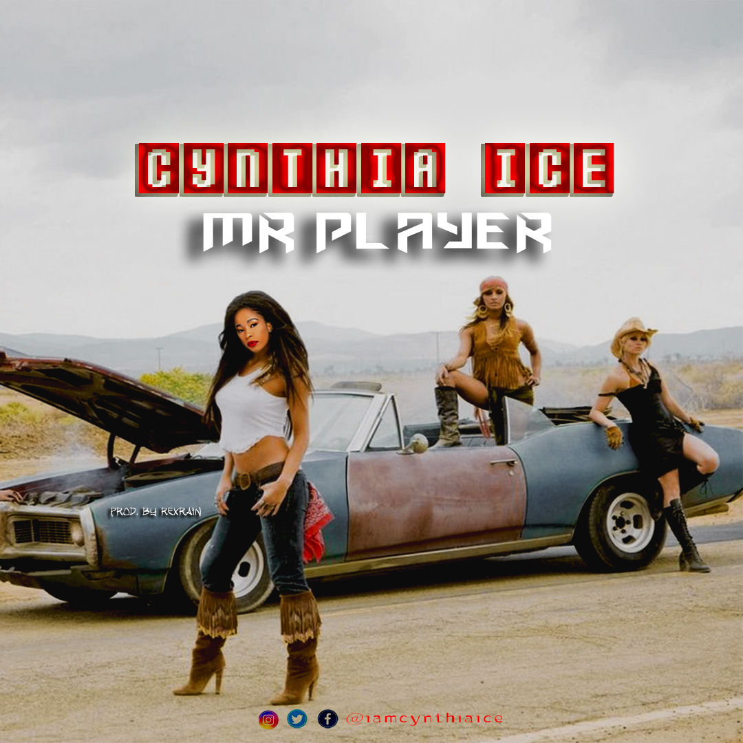 Mr Player single by Cynthia Ice