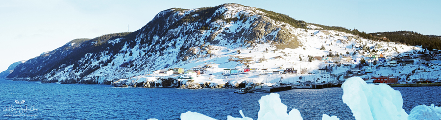 Portugal Cove Panoramic Winter 2020