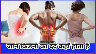 किडनी का दर्द कहाँ होता है और किडनी के दर्द के मुख्य कारण