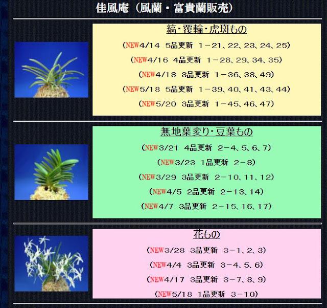 http://www.fuuran.jp/kafuuan.html