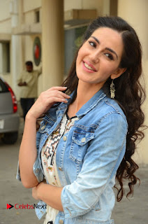 Actress Farah Karimi Pictures at Thikka First Look Launch  0016.JPG