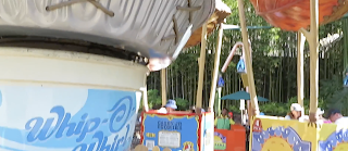 Flick's Flyers Ride System