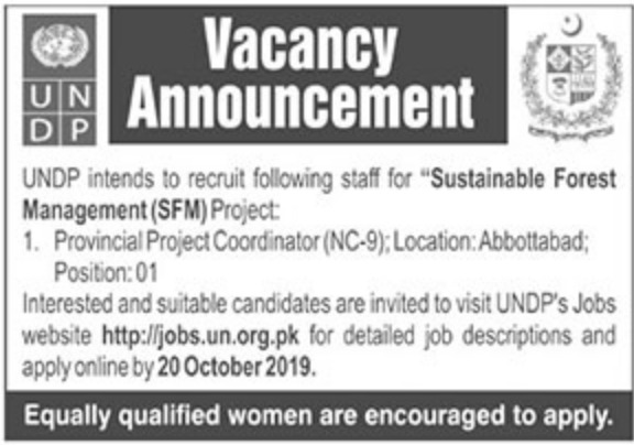 Latest Jobs in UNDP