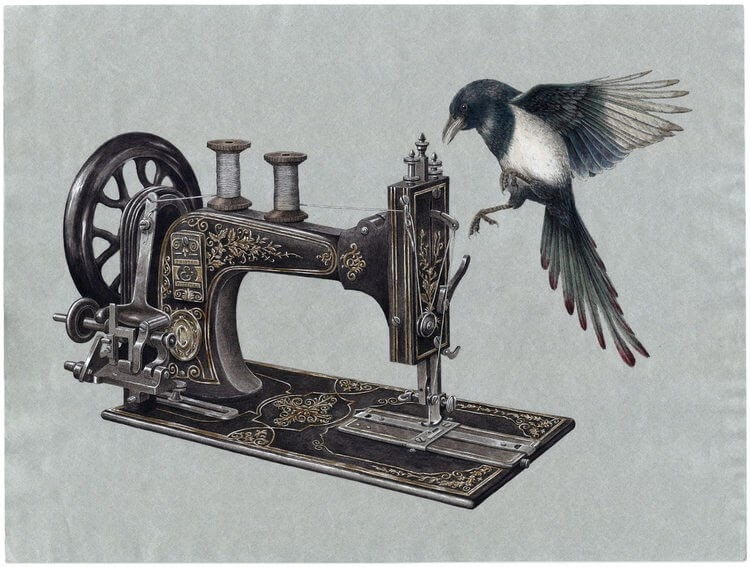 03-Singer-Sewing-Machine-Steeven-Salvat-Ink-Drawings-Birds-on-Vintage-Objects-and-Machines-www-designstack-co