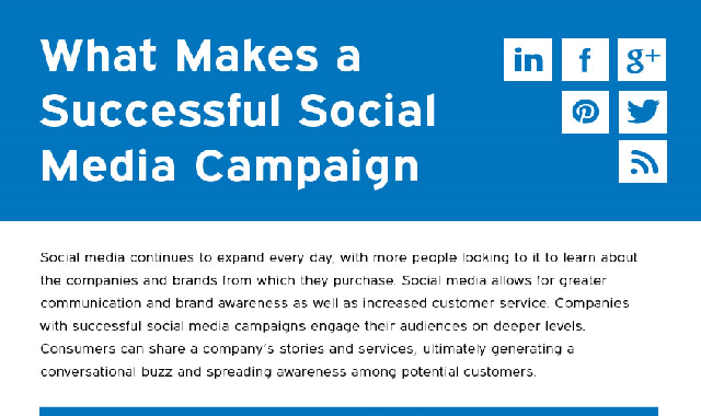 What Makes A Successful Social Media Campaign #infographic