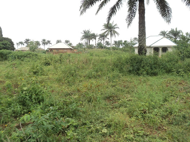 Land at Ibekan Community Fourth View