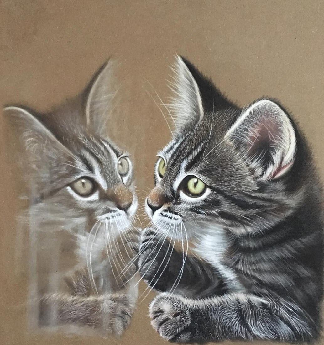 01-Kitten-s-reflection-Ivan-Hoo-Domestic-and-Wild-Animal-drawings-and-paintings-www-designstack-co