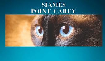 Point Carey