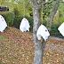 Ballon-Geister für Halloween