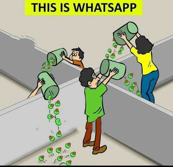 WhatsApp DP