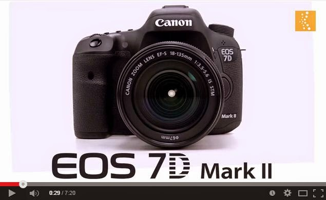 Wildlife Photographer Adam Jones talks about the new Canon 7D Mark II