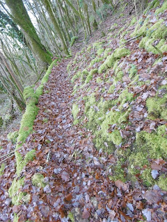 sentier de feuilles qui descend, malooka