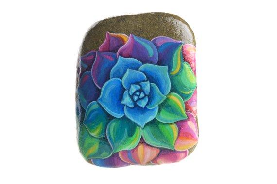 pretty rainbow succulent painted rock