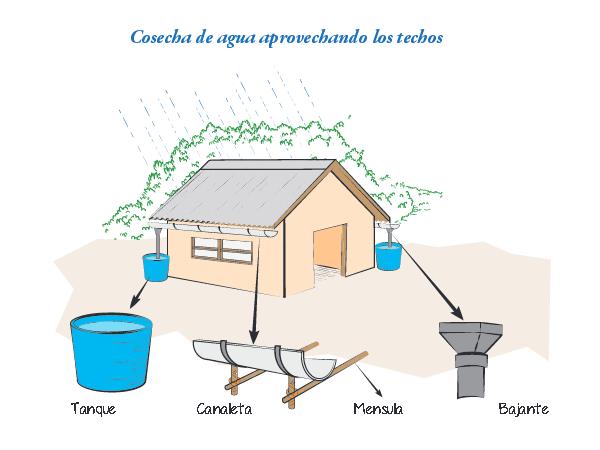 Técnica de recogida de agua de lluvia de los tejados de las casas
