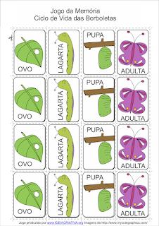jogo educativo metamorfose borboleta