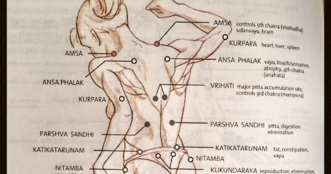 also lajja gauri marma points cover the human body rh lajjagaureespot