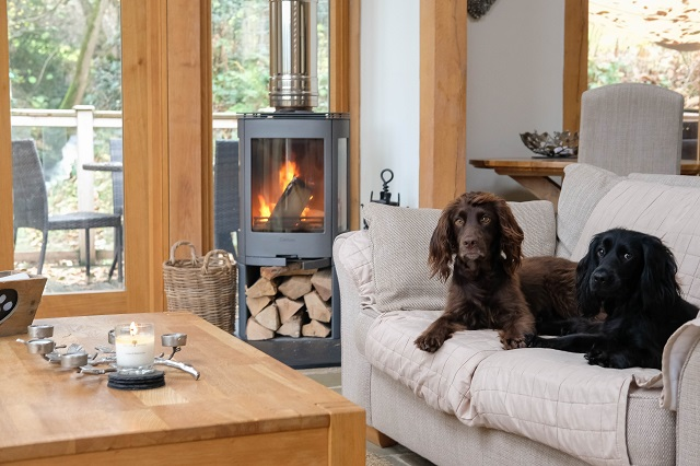 3 Places to stay with your dog in 2018