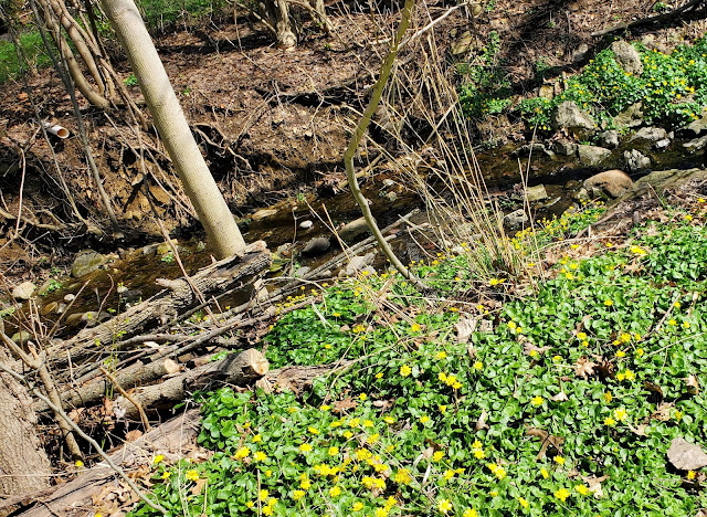 The Little Jordan Run stream near the Livingston House in Reynoldsburg, Ohio
