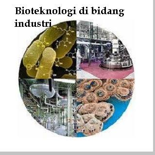 Hasil dan contoh bioteknologi di bidang industri