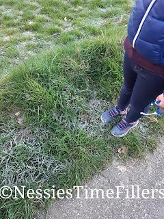 Crispy Gras