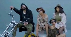 Download Video | Big Jahman ft Fid Q & Maua Sama - Umenituliza