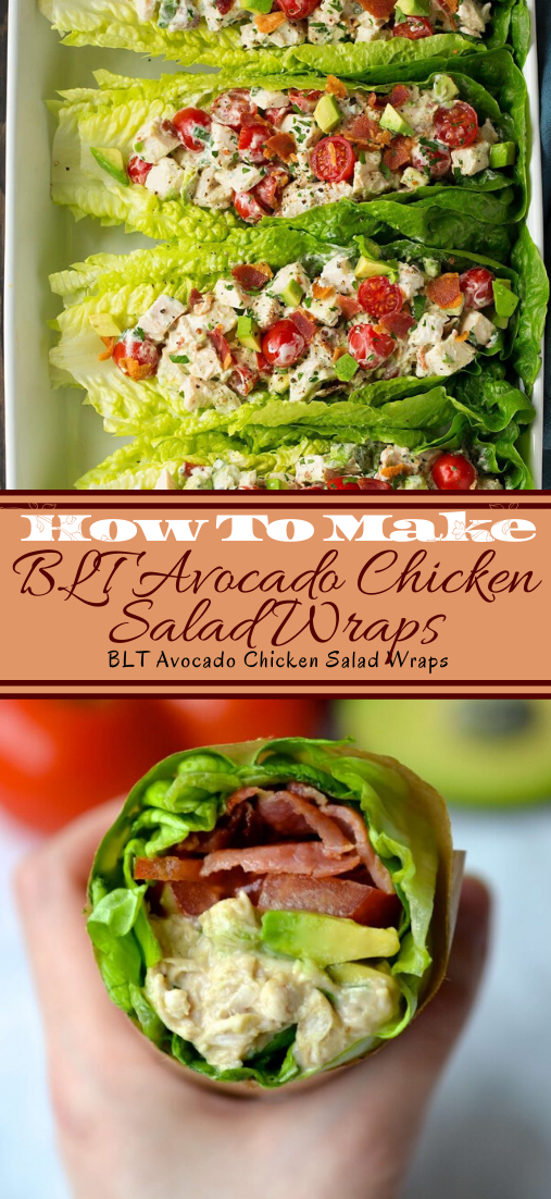 BLT Avocado Chicken Salad Wraps #vegan #vegetarian #soup #breakfast #lunch