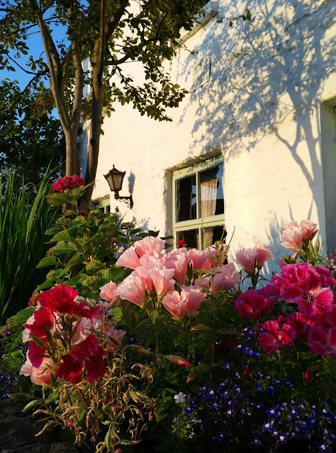window, flowers, colourful, white gables