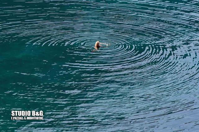 Η φωτογραφία της ημέρας: Ομόκεντροι κύκλοι του νερού