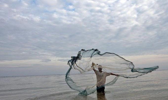 Maranhão é destaque no ranking brasileiro de produção de pescado