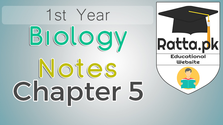 1st Year Biology Notes Chapter 5 Variety of Life - 11th Class Bio Notes pdf