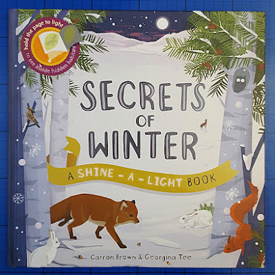 Secrets Of Winter Shine-A-Light Book Review