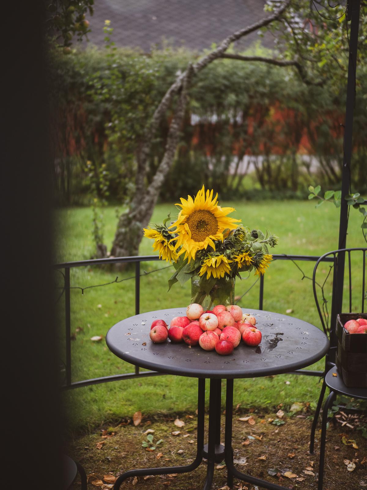helppo ja herkullinen gluteeniton omenapiirakka