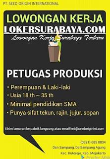 Lowongan Kerja Surabaya Terbaru di PT. Seed Origin International Juni 2019