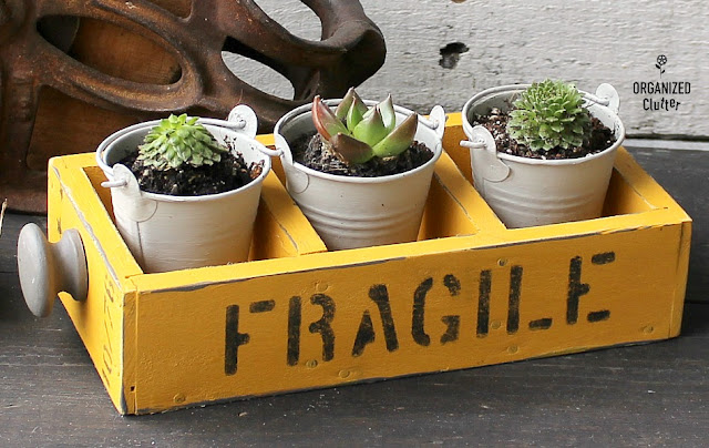 Upcycled Drawer Succulent Planter #oldsignstencils #upcycle #stencil #repurpose #colonelmustard #succulents #succulentplanter