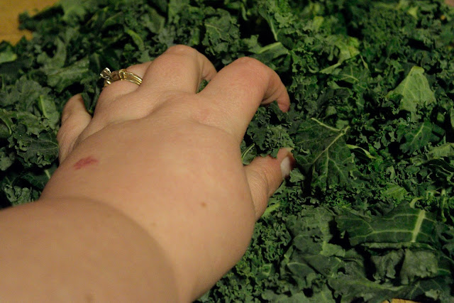 The kale being massaged.